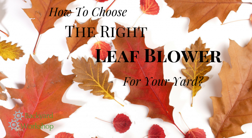 Our 2019 Leaf Blower and Mulcher Buying Guide