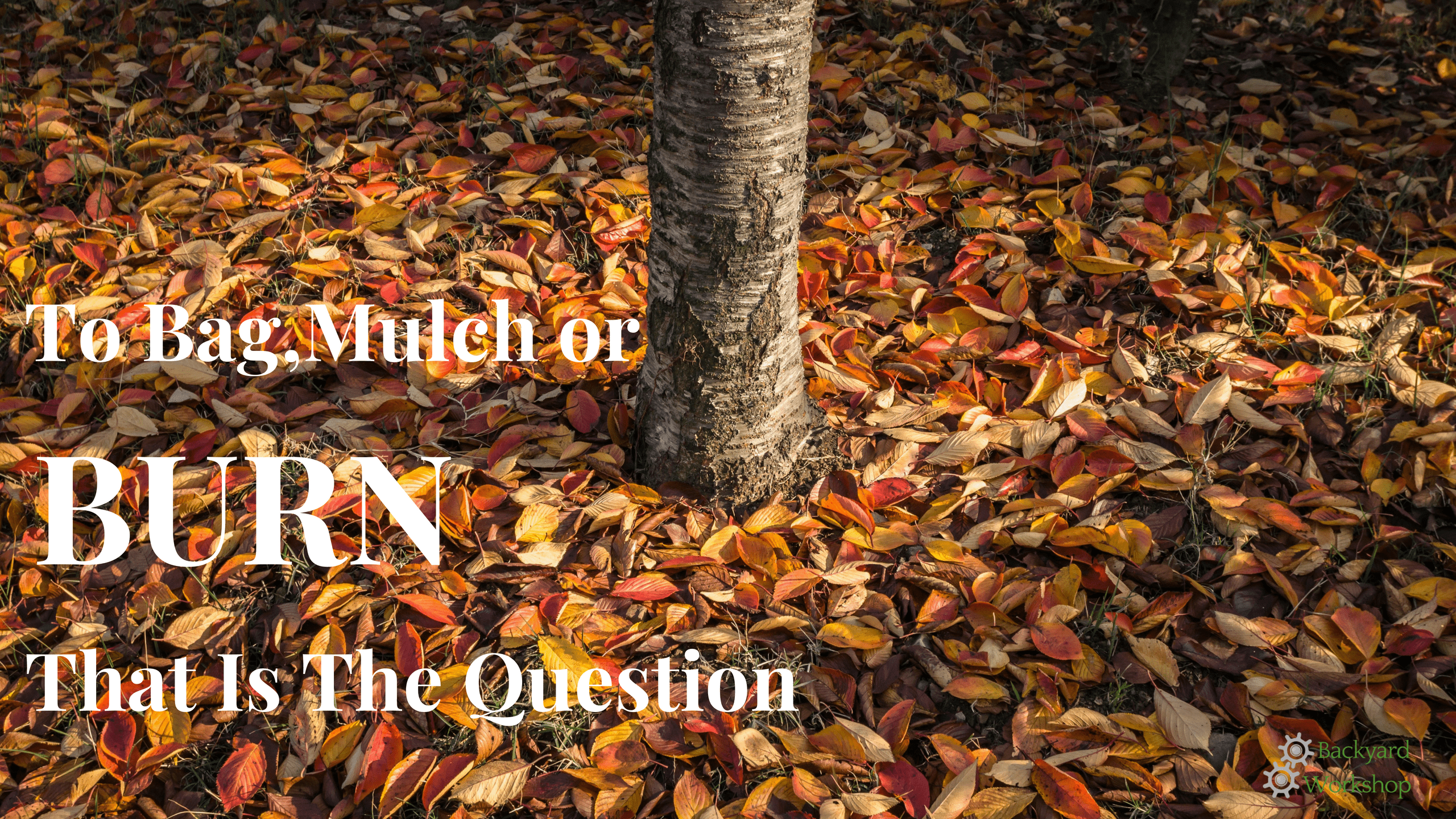 Bag Mulch Or Burn Your Leaves
