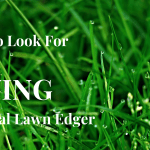 what to look for when buying a lawn edger