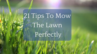 Looking to enjoy summer more, and spend less time mowing the lawn/ cutting the grass? Here are 21 Tips that will help you reclaim your summer