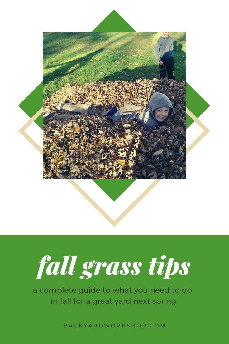 Follow These Fall Grass Tips For An Awesome Yard Next Sumer
