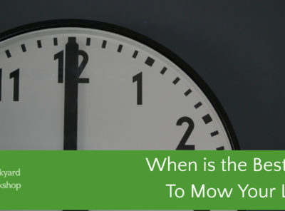 When Is The Best Time To Mow Your Lawn