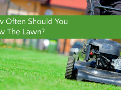 How Often Should You Mow Your Lawn or Yard?