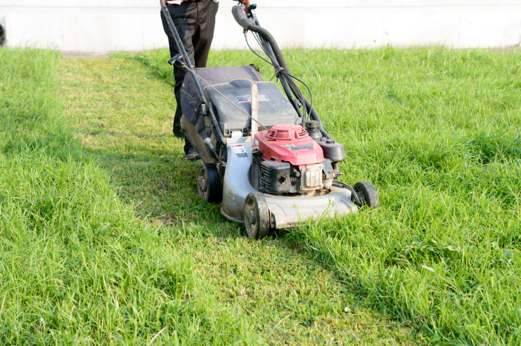 Make sure you overlap the wheels when you cut - otherwise you will leave lines in the grass.
