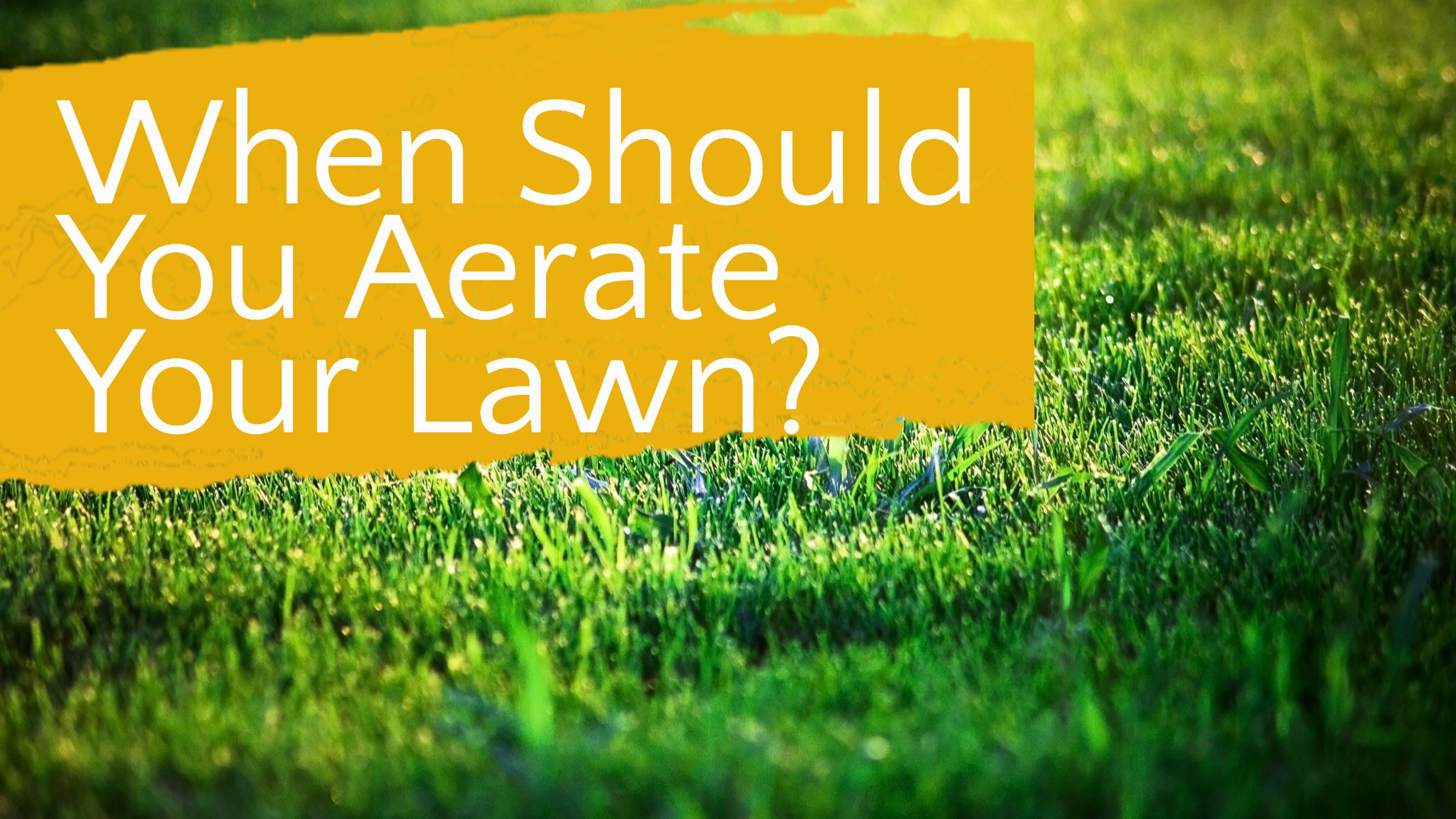 when to aerate the lawn